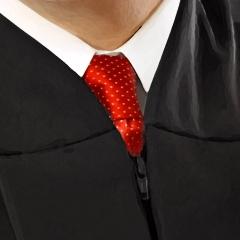 Judge-Eisenberg-64-Detail-Tie