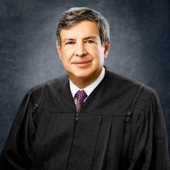 Judges-portrait-Judge-Saltz-judicial-portrait-